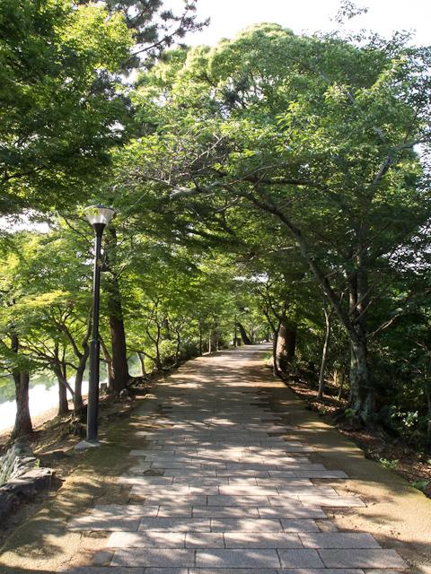 修学旅行【奈良・京都 第3・4弾】_c0180881_2073199.jpg
