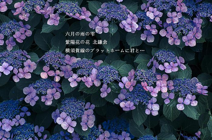 c0183700_18183963.jpg