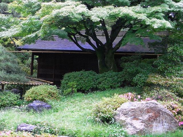 京都視察旅行 PARTⅠ(京都御所)_c0194417_1820369.jpg