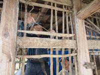 伝統ある武田家の修復作業その1(6月16日)_d0206420_18354491.jpg