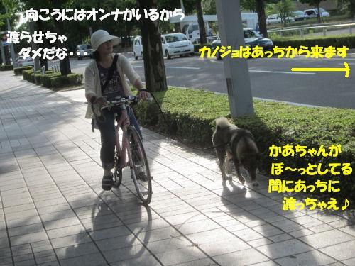 f0143123_19583342.jpg