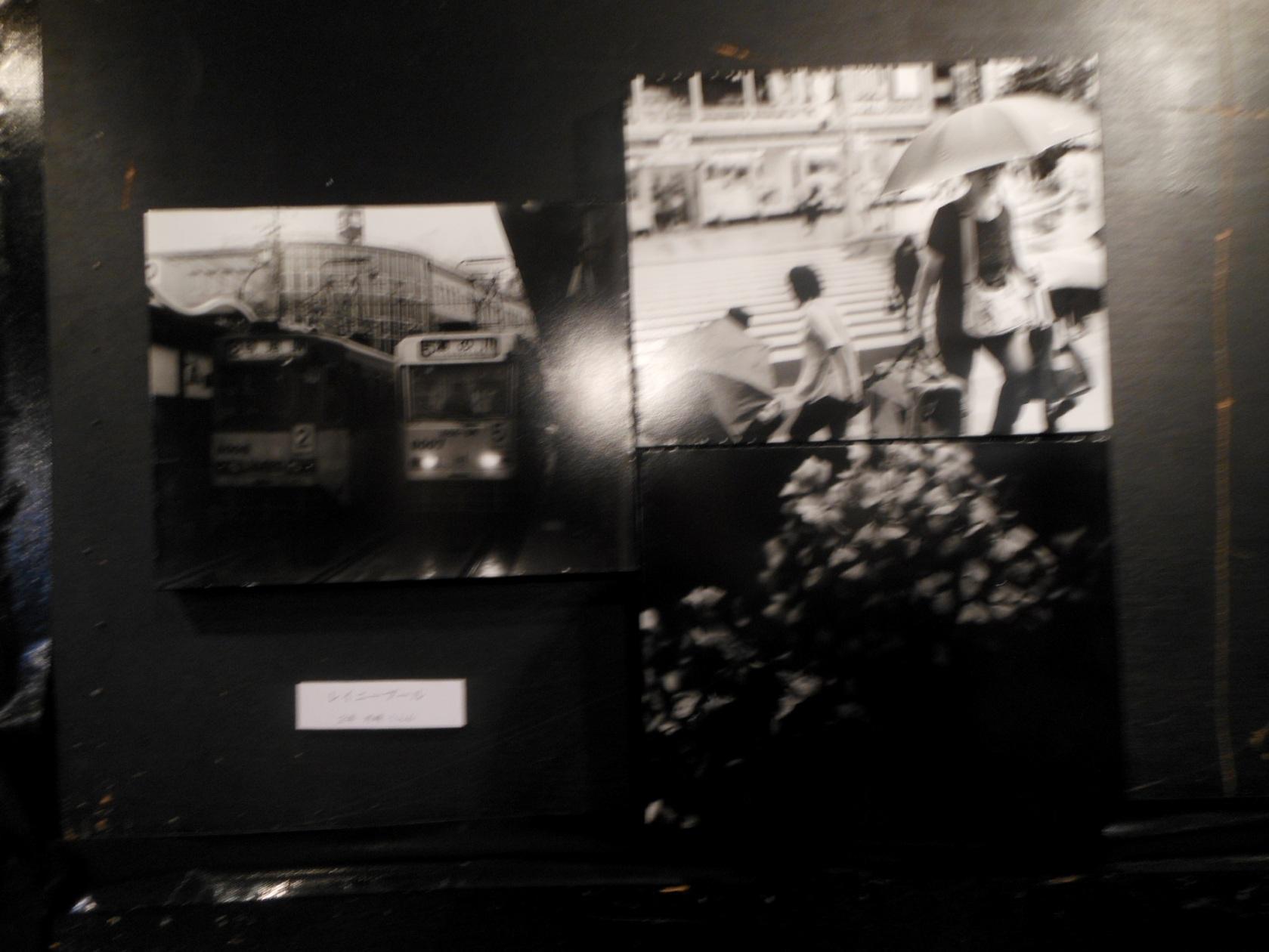 1793) 「札幌大学大学写真部 文連祭」 札幌大学構内 終了・6月16日(土)、17日(日)  _f0126829_11131573.jpg