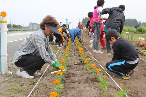 国道4号バイパス沿いを彩る花々 -「小さな親切」運動十和田支部花ロード植栽-_f0237658_17512977.jpg
