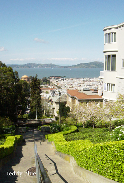 san francisco trip, Jun 2012  サンフランシスコの旅 _e0253364_98293.jpg