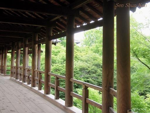 東福寺 緑のもみじ 2012年6月_a0164068_227128.jpg