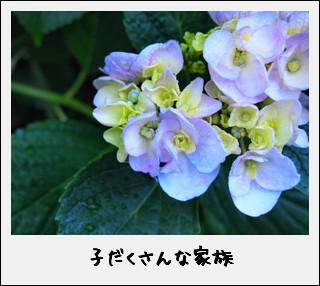 c0173670_1022146.jpg