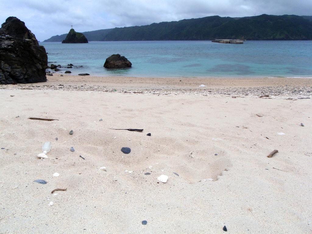 6/18 浜歩き_a0010095_16564846.jpg