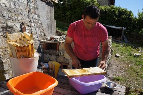 初の自家製蜂蜜を収穫しました♪_f0106597_438613.jpg