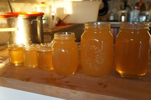 初の自家製蜂蜜を収穫しました♪_f0106597_4474166.jpg