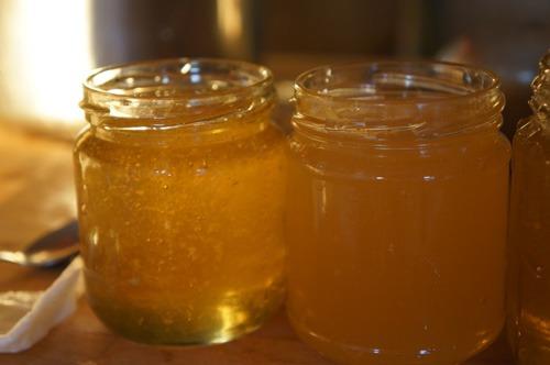 初の自家製蜂蜜を収穫しました♪_f0106597_4482095.jpg