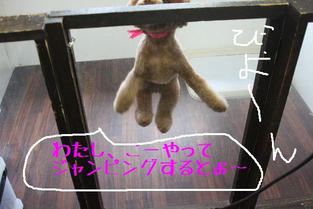 b0130018_9115462.jpg
