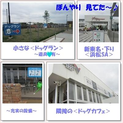 b0167519_1346641.jpg