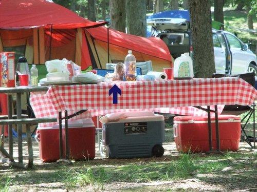 今年初キャンプ!_c0064534_1494843.jpg