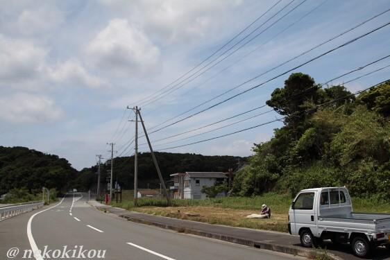 伊勢えびの町へ_b0138848_20183276.jpg