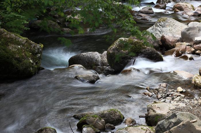f0174293_201121.jpg