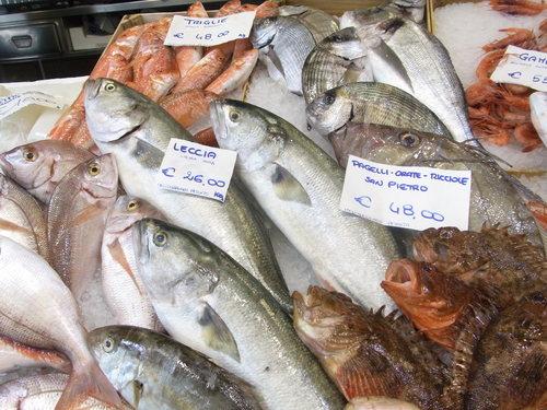塩麹ごはんで巻き寿司& トリノの鮮魚市場☆ Pescheria Gallina_b0246303_22123676.jpg
