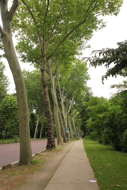 ボンジュール♪  14日目はパッシーエリア・ブローニュの森へ_a0213806_0573669.jpg