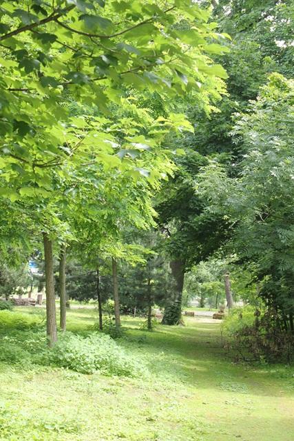 ボンジュール♪  14日目はパッシーエリア・ブローニュの森へ_a0213806_0582128.jpg