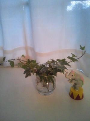 ころころとしたカップ咲きのバラのティアドロップブーケ ウェスティンホテルさんへ_b0113510_11293145.jpg