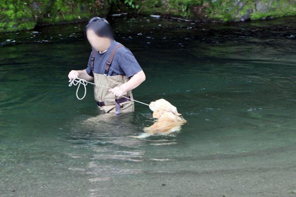 2012年川遊び さいご_f0203423_18593129.jpg