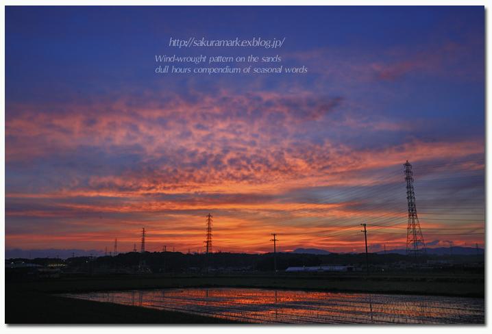 蜂の巣状の夕空。_f0235723_2084277.jpg