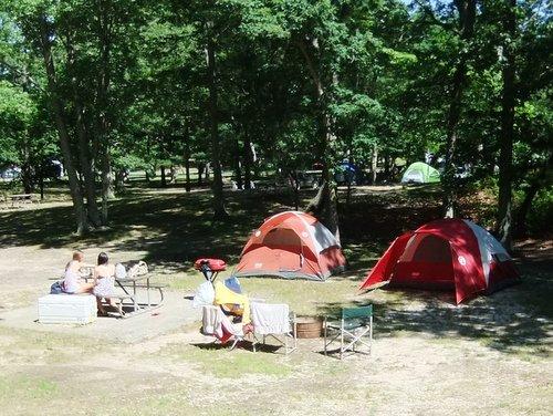今年初キャンプ part2_c0064534_8582553.jpg