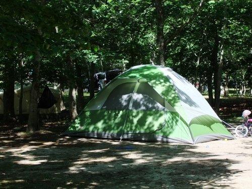 今年初キャンプ part2_c0064534_911612.jpg