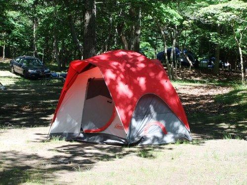 今年初キャンプ part2_c0064534_91622.jpg