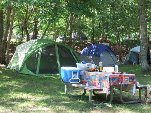 今年初キャンプ part2_c0064534_9294.jpg