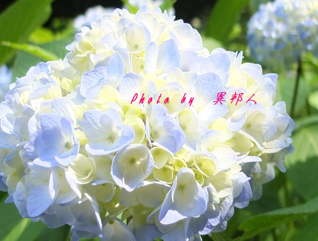 c0122445_951734.jpg