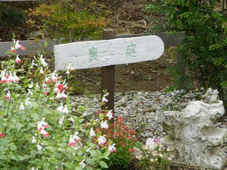 川島町のアスタリスクさんへ_a0127658_19244850.jpg