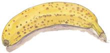 バナナ_f0189164_19171236.jpg