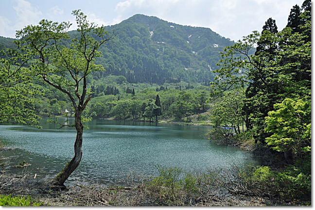 糸魚川市・・・高浪の池_b0053765_2240153.jpg