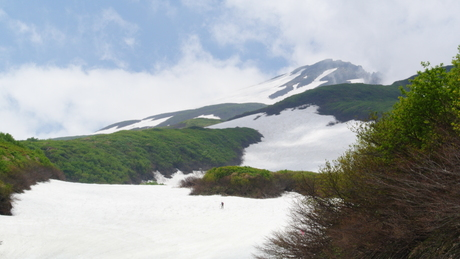 2012年6月15日 新緑と残雪と山菜と酒の鳥海山へ_c0242406_1842656.jpg