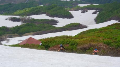 2012年6月15日 新緑と残雪と山菜と酒の鳥海山へ_c0242406_18441121.jpg