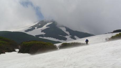 2012年6月15日 新緑と残雪と山菜と酒の鳥海山へ_c0242406_18464626.jpg