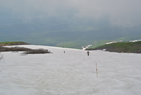 2012年6月15日 新緑と残雪と山菜と酒の鳥海山へ_c0242406_1854041.jpg