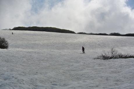 2012年6月15日 新緑と残雪と山菜と酒の鳥海山へ_c0242406_19161739.jpg