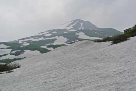 2012年6月15日 新緑と残雪と山菜と酒の鳥海山へ_c0242406_19212233.jpg