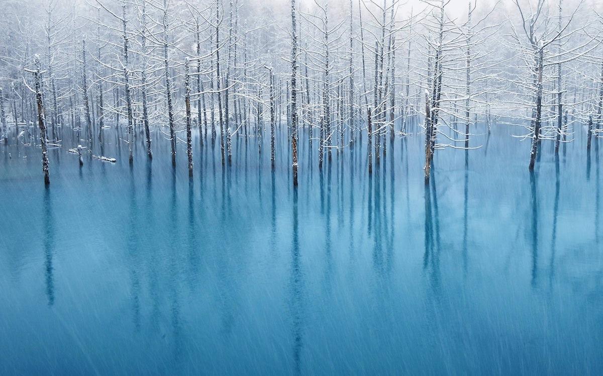 青い池_f0138807_6374257.jpg