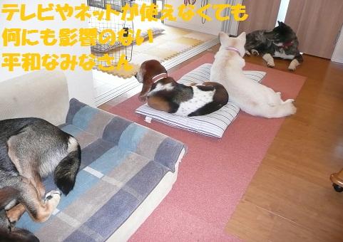 f0121712_22111618.jpg