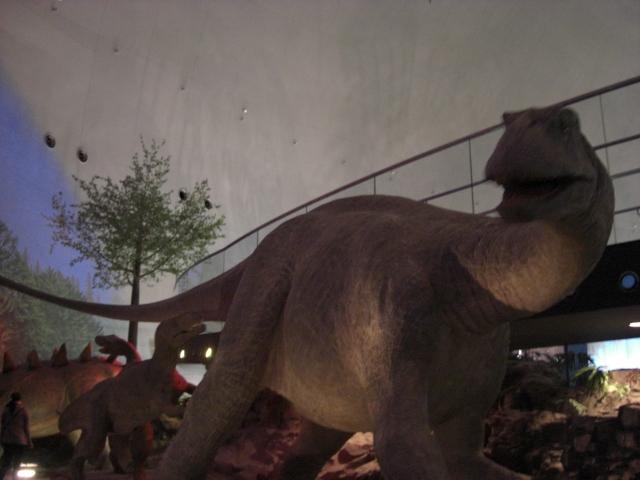 恐竜の世界_f0226713_1193195.jpg