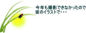 投稿)蛍観賞会_d0070316_20221973.jpg