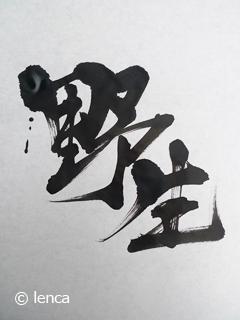 ワイルド ポーちゃん だぜぇ_c0053520_22533981.jpg