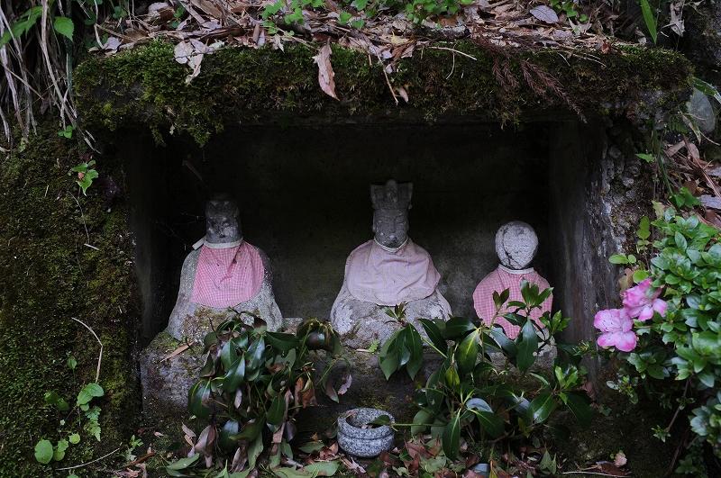 正しい日本の田舎風景 四国_f0050534_8143353.jpg