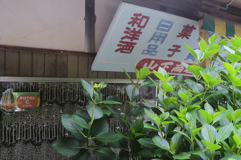 正しい日本の田舎風景 四国_f0050534_8144626.jpg