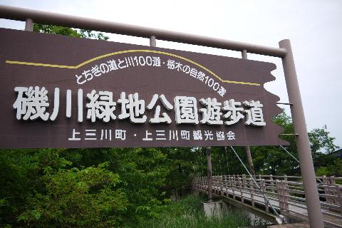 磯川緑地公園_e0227942_21553132.jpg