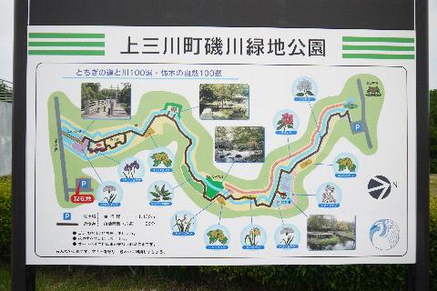 磯川緑地公園_e0227942_22114936.jpg