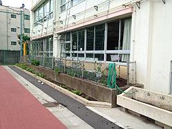学校の田んぼ(月光原小)_d0247484_16153323.jpg