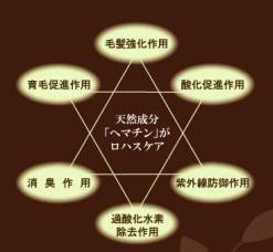 f0217090_16264470.jpg